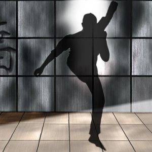 shadow-boxing-270721_640